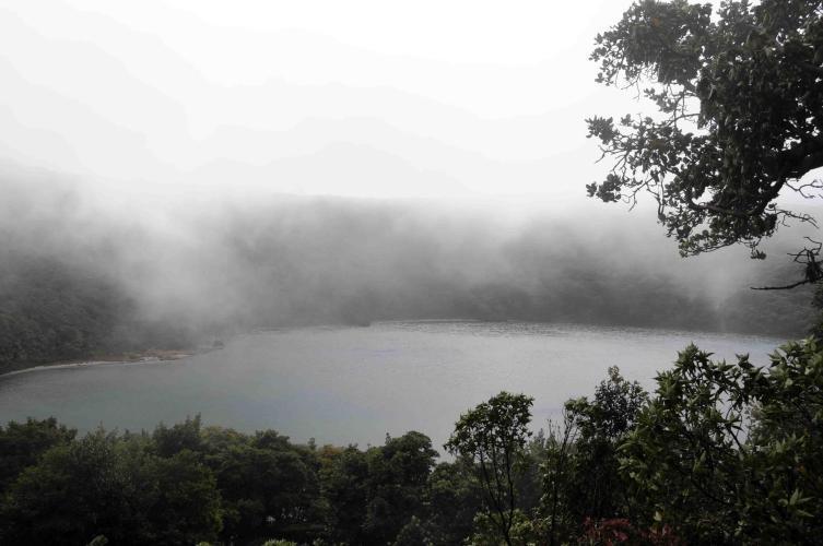 Boton Laguna