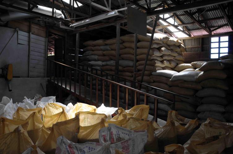 Coffee stored in sacks