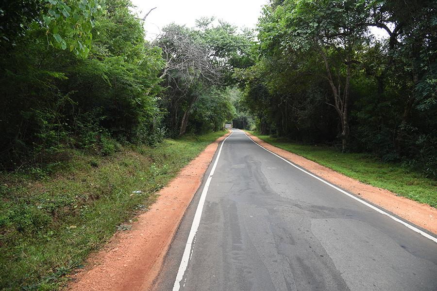 The last km to Sigiriya