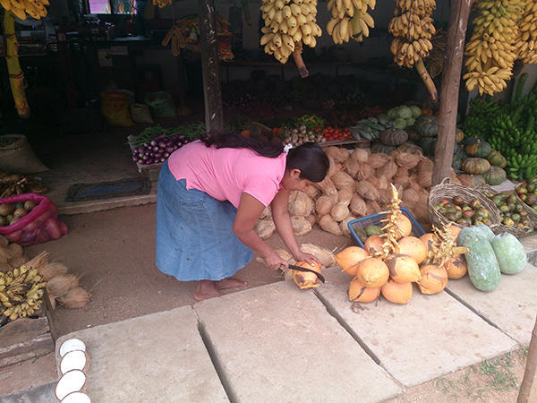 Meeting the future financial management of Sri Lanka cutting king coconuts