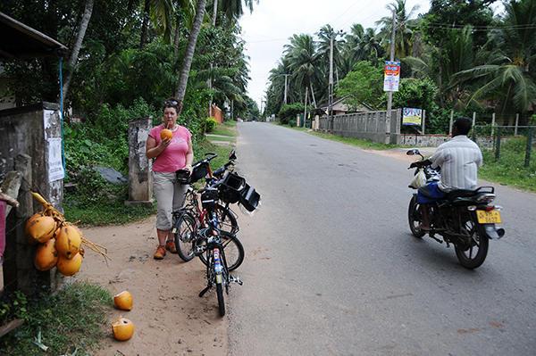 Coconut stop