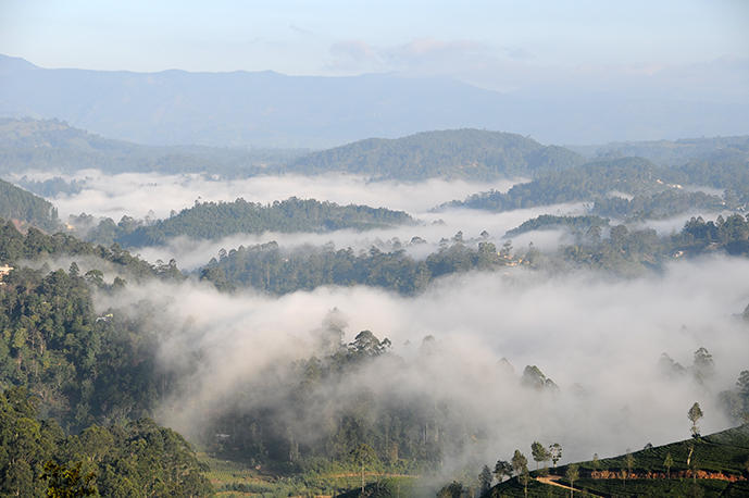 Misty mountains in the morning at Haputale