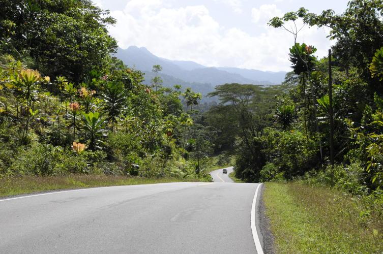Road to Punta Pena