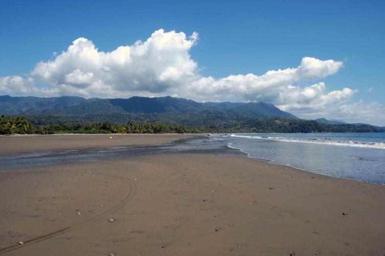 Parque Nacional Ballena