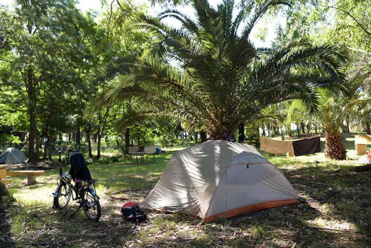 Los Nogales camping