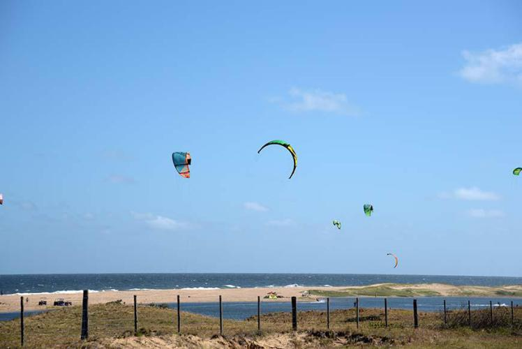 They enjoy the wind we don´t!!! (headwind)