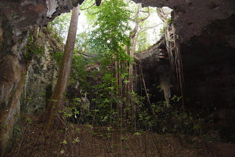 Former cenote iside Lol Tun