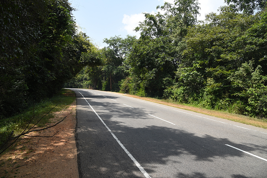 Minneriya road