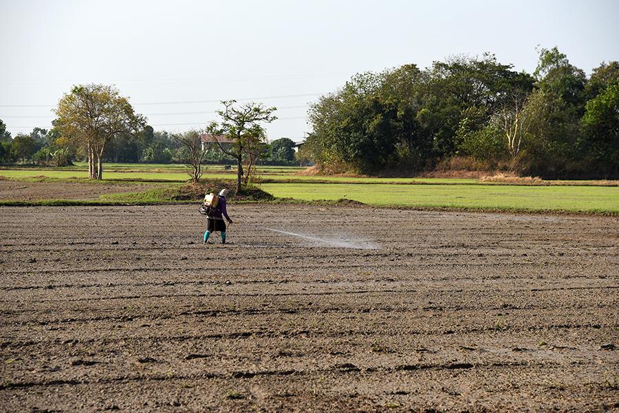 Farmer spraying fertilizers