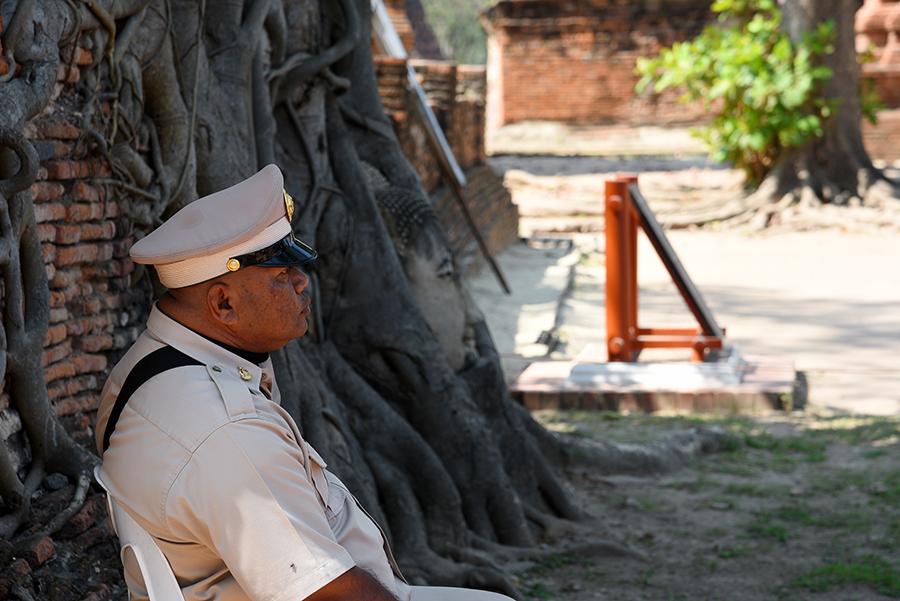 Guarding the Buddha head