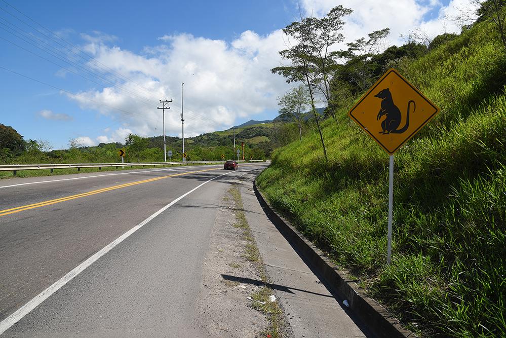 Funny road signal